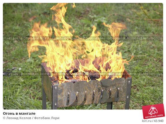Купить «Огонь в мангале», фото № 43940, снято 22 ноября 2017 г. (c) Леонид Козлов / Фотобанк Лори