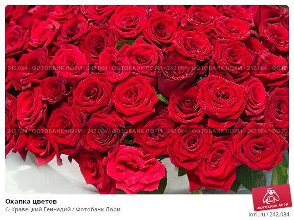 Охапка цветов, фото № 242084, снято 22 октября 2016 г. (c) Кравецкий Геннадий / Фотобанк Лори