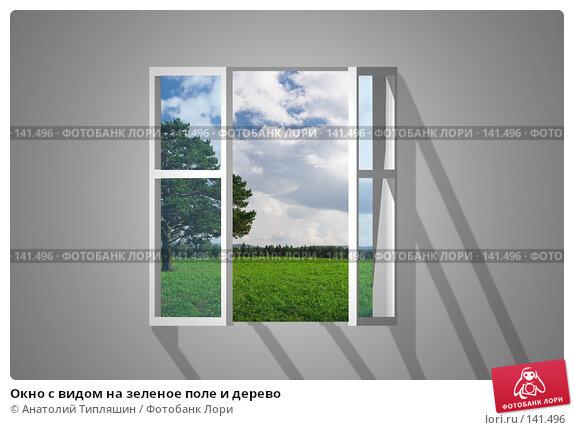 Окно с видом на зеленое поле и дерево, фото № 141496, снято 27 мая 2017 г. (c) Анатолий Типляшин / Фотобанк Лори