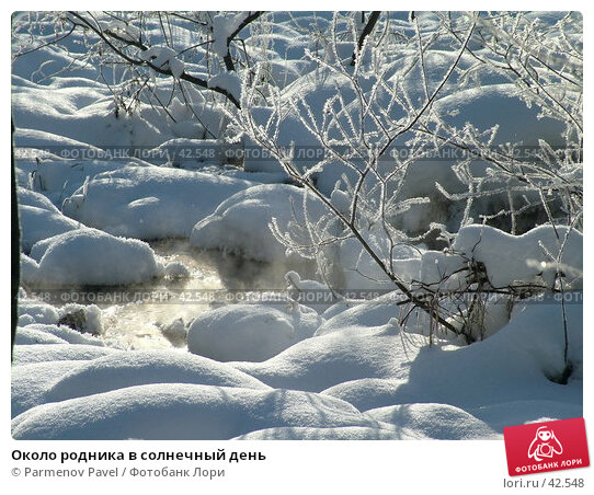 Около родника в солнечный день, фото № 42548, снято 12 февраля 2007 г. (c) Parmenov Pavel / Фотобанк Лори
