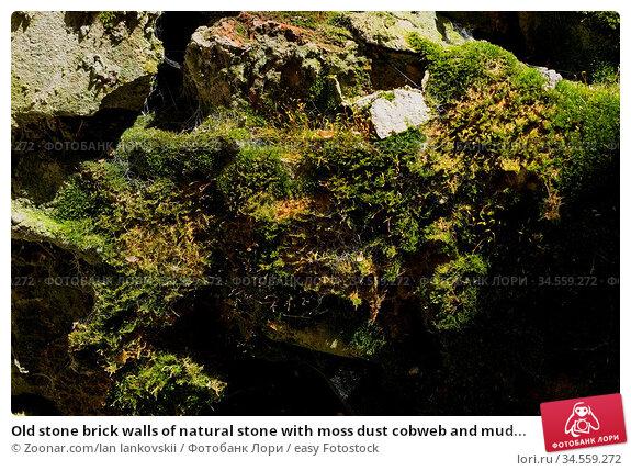 Old stone brick walls of natural stone with moss dust cobweb and mud... Стоковое фото, фотограф Zoonar.com/Ian Iankovskii / easy Fotostock / Фотобанк Лори