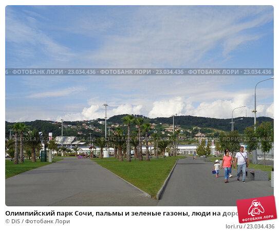 Олимпийский парк Сочи, пальмы и зеленые газоны, люди на дорожках, голубое небо с белыми облаками, фото № 23034436, снято 1 июня 2016 г. (c) DiS / Фотобанк Лори