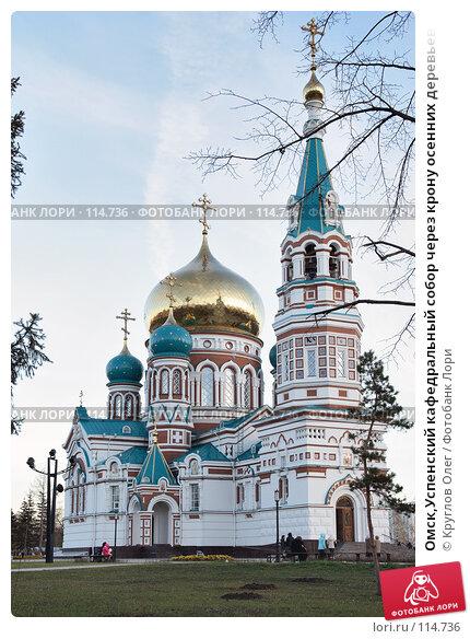 Омск,Успенский кафедральный собор через крону осенних деревьев, фото № 114736, снято 28 октября 2007 г. (c) Круглов Олег / Фотобанк Лори