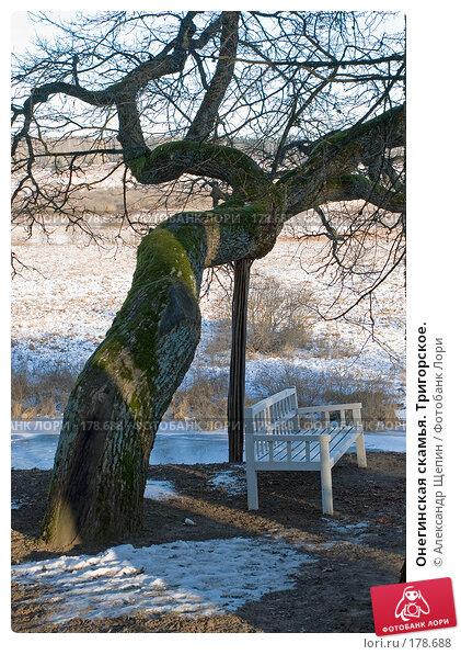 Онегинская скамья. Тригорское., эксклюзивное фото № 178688, снято 5 января 2008 г. (c) Александр Щепин / Фотобанк Лори