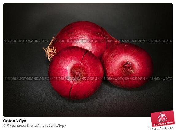 Купить «Onion \ Лук», фото № 115460, снято 11 ноября 2007 г. (c) Лифанцева Елена / Фотобанк Лори
