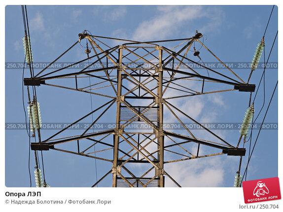 Опора ЛЭП, фото № 250704, снято 6 апреля 2008 г. (c) Надежда Болотина / Фотобанк Лори