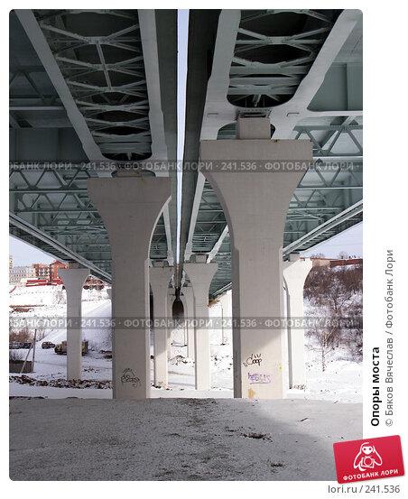 Опоры моста, фото № 241536, снято 16 марта 2008 г. (c) Бяков Вячеслав / Фотобанк Лори