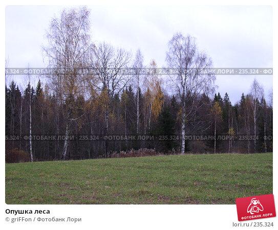 Опушка леса, фото № 235324, снято 24 октября 2004 г. (c) griFFon / Фотобанк Лори