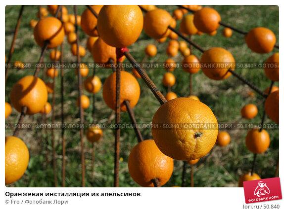 Оранжевая инсталляция из апельсинов, фото № 50840, снято 2 июня 2007 г. (c) Fro / Фотобанк Лори