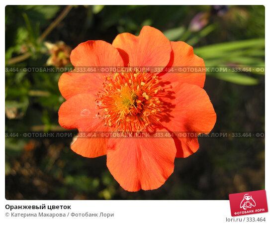 Оранжевый цветок, фото № 333464, снято 21 июня 2008 г. (c) Катерина Макарова / Фотобанк Лори