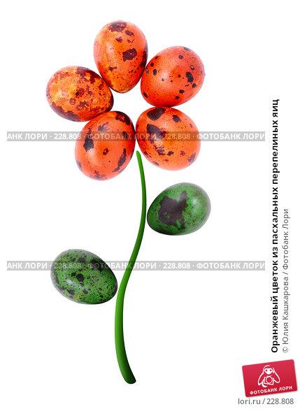 Оранжевый цветок из пасхальных перепелиных яиц, фото № 228808, снято 15 марта 2008 г. (c) Юлия Кашкарова / Фотобанк Лори