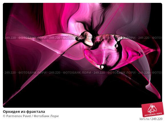 Орхидея из фрактала, иллюстрация № 249220 (c) Parmenov Pavel / Фотобанк Лори