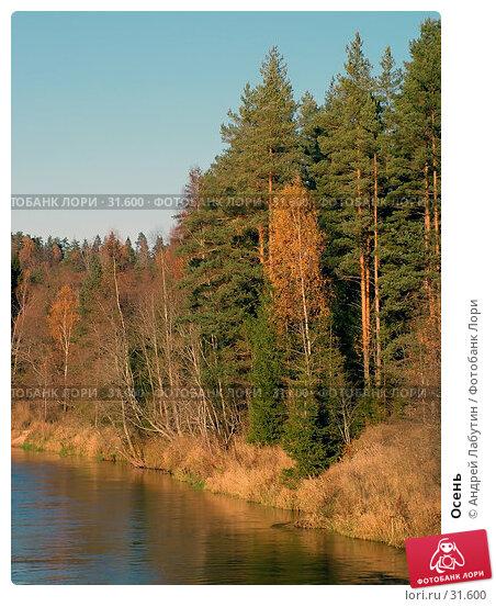 Осень, фото № 31600, снято 28 октября 2005 г. (c) Андрей Лабутин / Фотобанк Лори