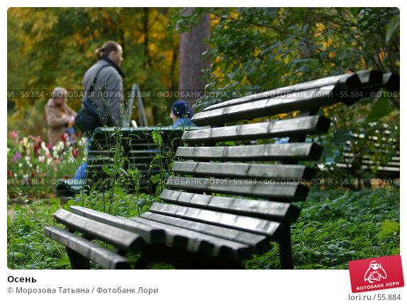 Осень, фото № 55884, снято 7 октября 2004 г. (c) Морозова Татьяна / Фотобанк Лори