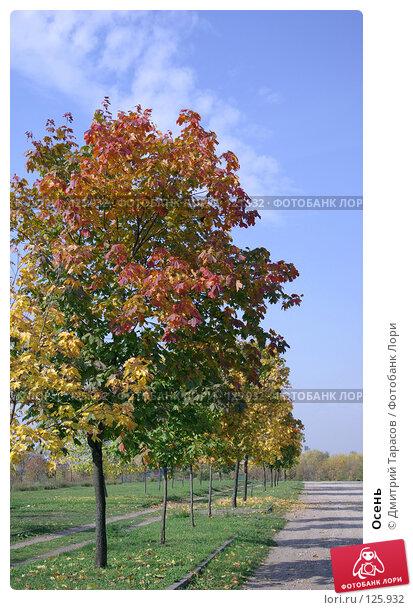 Осень, фото № 125932, снято 29 сентября 2007 г. (c) Дмитрий Тарасов / Фотобанк Лори