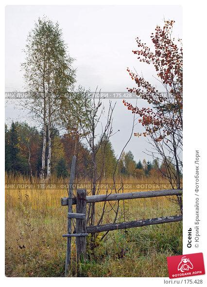 Осень, фото № 175428, снято 3 октября 2007 г. (c) Юрий Брыкайло / Фотобанк Лори