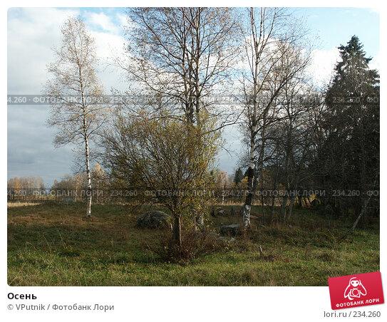 Осень, фото № 234260, снято 8 октября 2005 г. (c) VPutnik / Фотобанк Лори