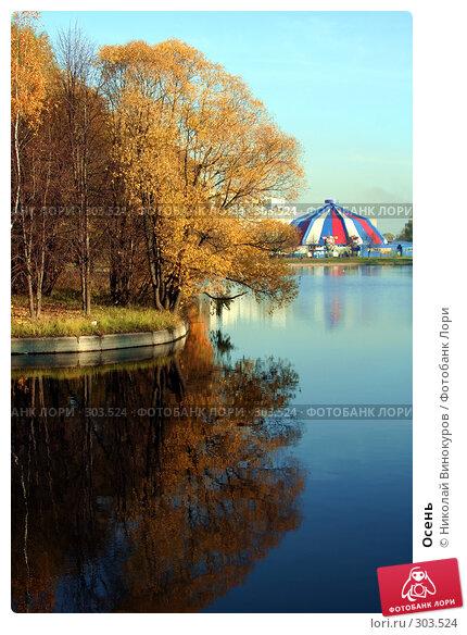 Купить «Осень», фото № 303524, снято 22 апреля 2018 г. (c) Николай Винокуров / Фотобанк Лори