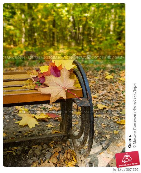 Осень, фото № 307720, снято 7 октября 2007 г. (c) Максим Пименов / Фотобанк Лори