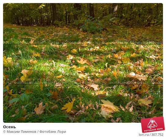 Осень, фото № 307752, снято 7 октября 2007 г. (c) Максим Пименов / Фотобанк Лори
