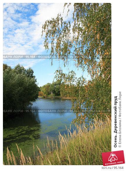 Осень. Деревенский пруд, фото № 95164, снято 22 сентября 2007 г. (c) Елена Блохина / Фотобанк Лори