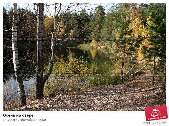 Купить «Осень на озере», эксклюзивное фото № 284788, снято 7 октября 2007 г. (c) Gagara / Фотобанк Лори