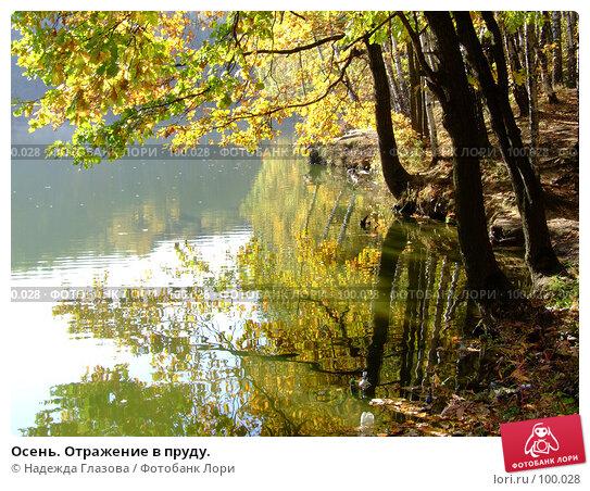 Осень. Отражение в пруду., фото № 100028, снято 29 сентября 2007 г. (c) Надежда Глазова / Фотобанк Лори