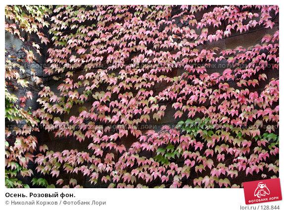 Осень. Розовый фон., фото № 128844, снято 24 сентября 2006 г. (c) Николай Коржов / Фотобанк Лори