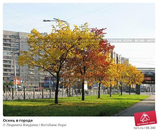 Осень в городе, фото № 88340, снято 9 декабря 2016 г. (c) Людмила Жмурина / Фотобанк Лори