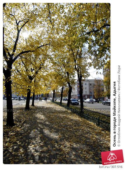 Купить «Осень в городе Майкопе, Адыгея», фото № 307516, снято 25 апреля 2018 г. (c) Оглоблин Андрей Николаевич / Фотобанк Лори