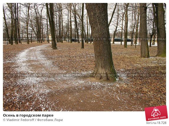 Осень в городском парке, фото № 8728, снято 20 апреля 2005 г. (c) Vladimir Fedoroff / Фотобанк Лори
