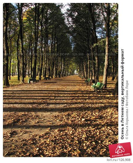 Осень в Летнем саду, вертикальный формат, фото № 126908, снято 11 октября 2007 г. (c) Ольга Хорькова / Фотобанк Лори
