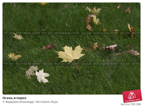 Купить «Осень в парке», фото № 101336, снято 8 октября 2007 г. (c) Федюнин Александр / Фотобанк Лори
