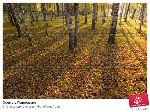 Купить «Осень в Павловске», эксклюзивное фото № 178412, снято 30 сентября 2007 г. (c) Александр Алексеев / Фотобанк Лори
