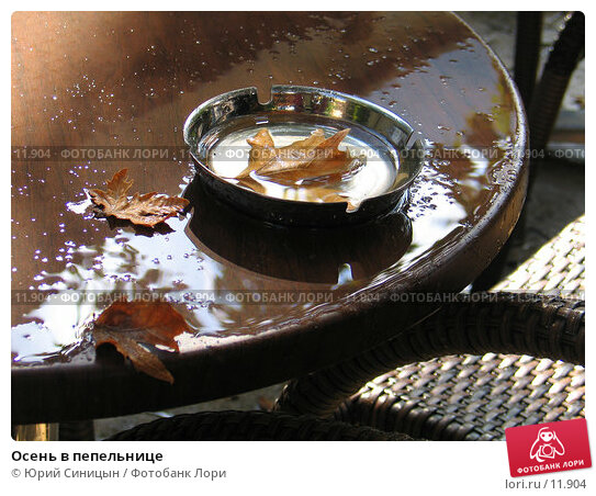 Осень в пепельнице, фото № 11904, снято 24 сентября 2006 г. (c) Юрий Синицын / Фотобанк Лори