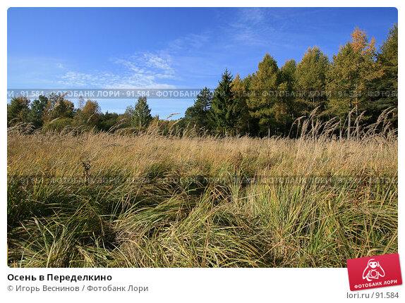 Осень в Переделкино, фото № 91584, снято 2 октября 2007 г. (c) Игорь Веснинов / Фотобанк Лори