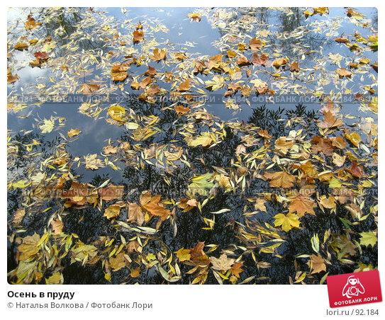 Купить «Осень в пруду», эксклюзивное фото № 92184, снято 3 октября 2007 г. (c) Наталья Волкова / Фотобанк Лори