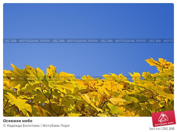 Осеннее небо, фото № 292308, снято 27 октября 2007 г. (c) Надежда Болотина / Фотобанк Лори