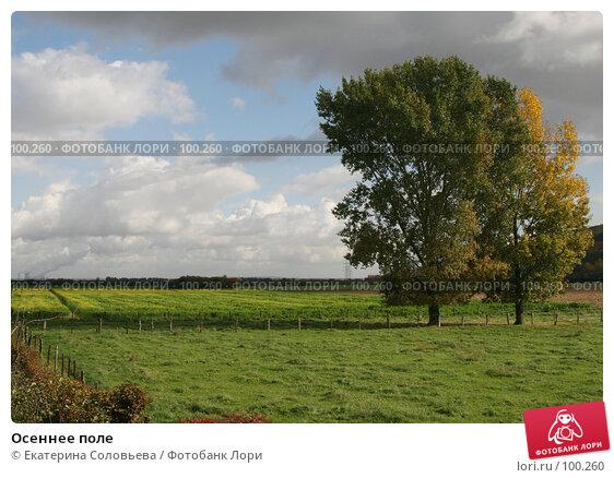 Купить «Осеннее поле», фото № 100260, снято 18 октября 2007 г. (c) Екатерина Соловьева / Фотобанк Лори