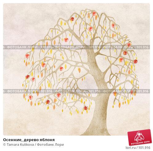 Купить «Осенние, дерево яблоня», иллюстрация № 101916 (c) Tamara Kulikova / Фотобанк Лори