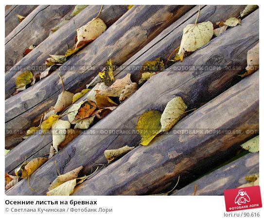 Осенние листья на бревнах, фото № 90616, снято 17 января 2017 г. (c) Светлана Кучинская / Фотобанк Лори