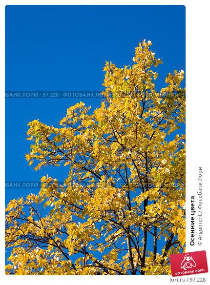 Купить «Осенние цвета», фото № 97228, снято 20 сентября 2007 г. (c) Argument / Фотобанк Лори