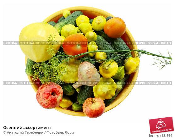 Купить «Осенний ассортимент», фото № 88364, снято 4 августа 2007 г. (c) Анатолий Теребенин / Фотобанк Лори