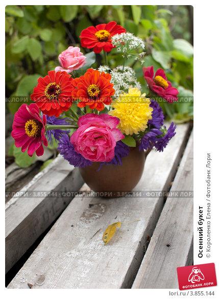 Купить «Осенний букет», фото № 3855144, снято 16 сентября 2012 г. (c) Короленко Елена / Фотобанк Лори