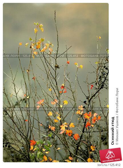 Осенний этюд, фото № 125412, снято 23 октября 2007 г. (c) Михаил Ушаков / Фотобанк Лори