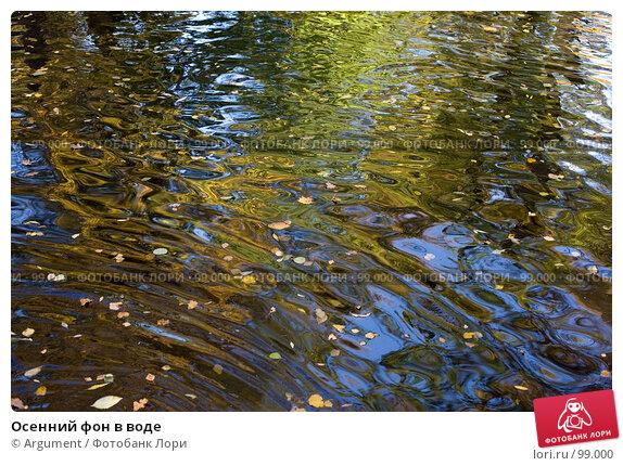 Купить «Осенний фон в воде», фото № 99000, снято 30 сентября 2007 г. (c) Argument / Фотобанк Лори