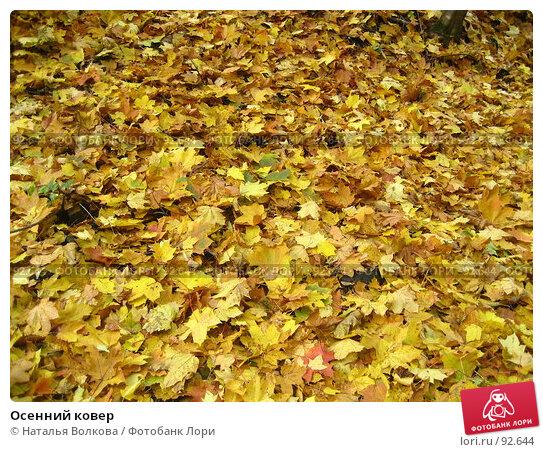 Купить «Осенний ковер», фото № 92644, снято 3 октября 2007 г. (c) Наталья Волкова / Фотобанк Лори