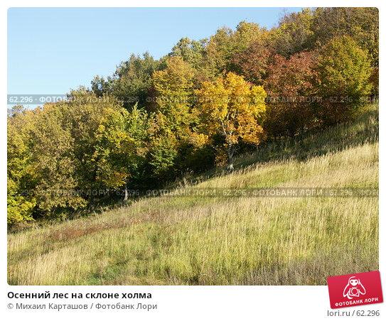 Осенний лес на склоне холма, эксклюзивное фото № 62296, снято 2 октября 2004 г. (c) Михаил Карташов / Фотобанк Лори