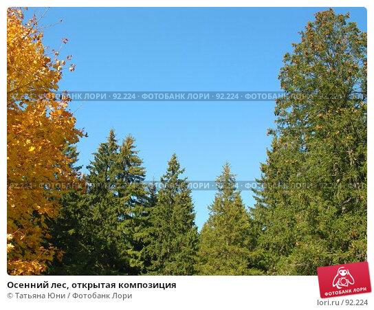 Купить «Осенний лес, открытая композиция», эксклюзивное фото № 92224, снято 30 сентября 2007 г. (c) Татьяна Юни / Фотобанк Лори
