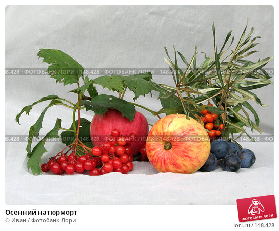 Осенний натюрморт, фото № 148428, снято 26 августа 2007 г. (c) Иван / Фотобанк Лори